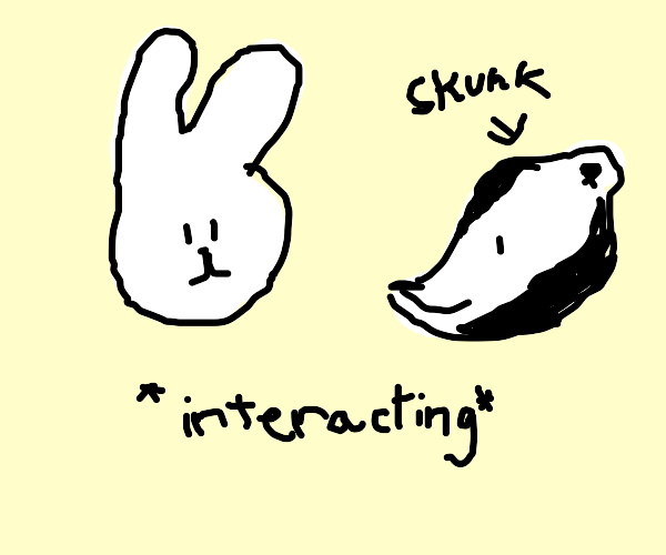 Rabbit and skunk interact