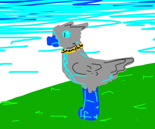 blue+gray ostrich like bird named snowflake
