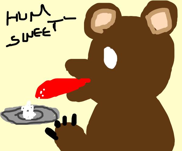 bear licks sugar on paper