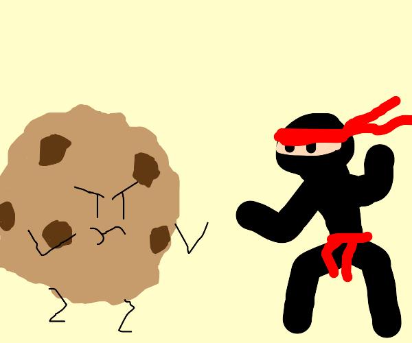 Ninja fights cookie