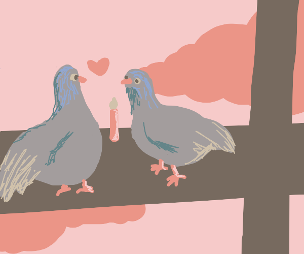 two birds on a date