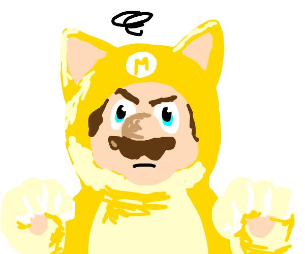Mario hates his cat suit