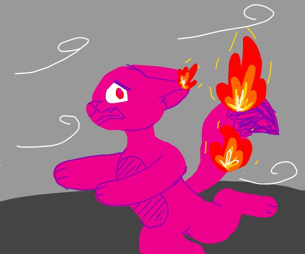 furry on fire on a windy day
