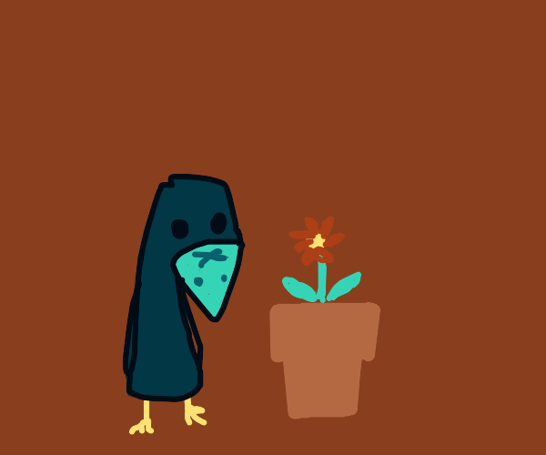 Crow looks at plant