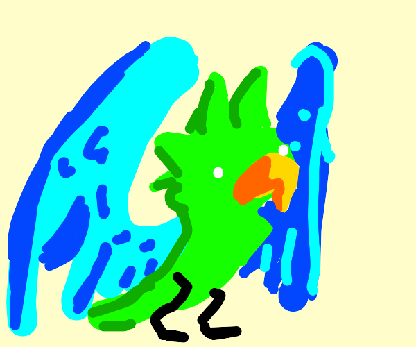 bird with blue wings