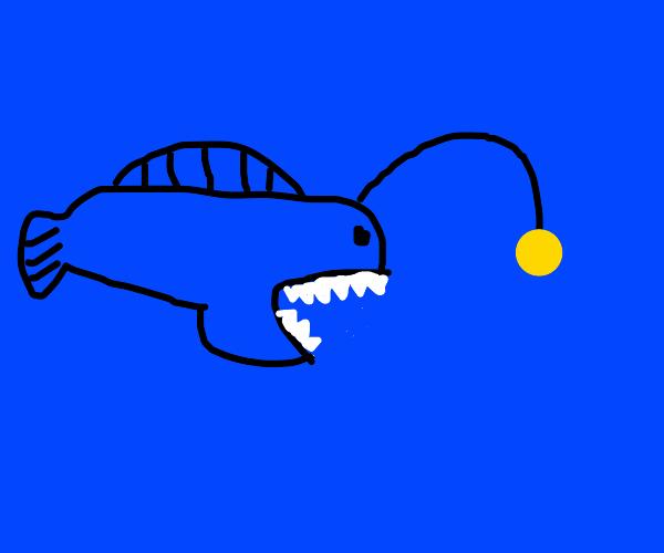 angler fish at the hunt