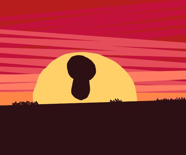 Limbless person walks away on the sunset