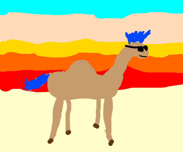 Camel with a mohawk and sunglasses