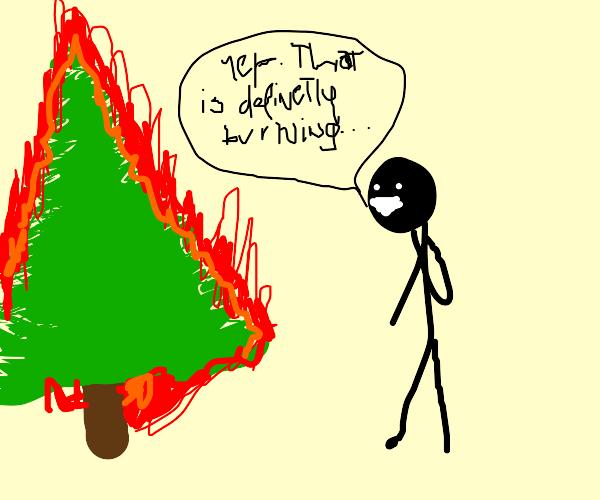 Inspecting a burning fir