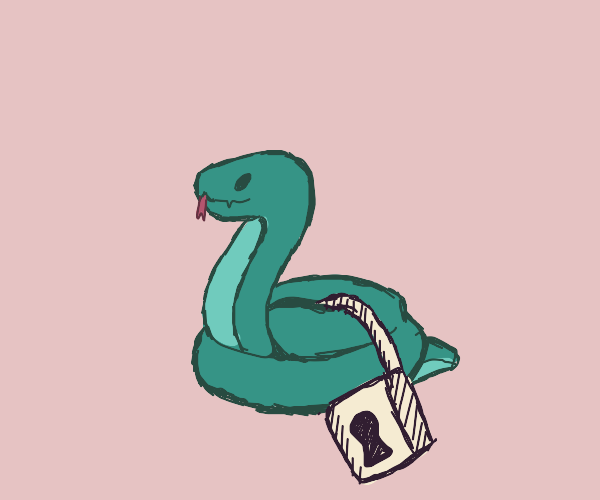 Snake with a lock on it