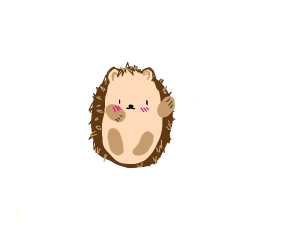 Precious little hedgehog waves at you!