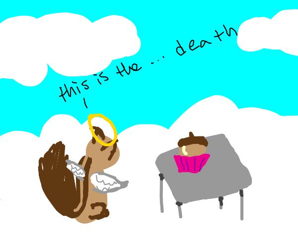 angel chipmunk enjoying perks of heaven