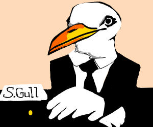 Mr. (Sea)Gull is concerned about you.