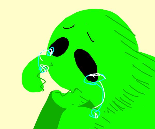 Crying praying mantis