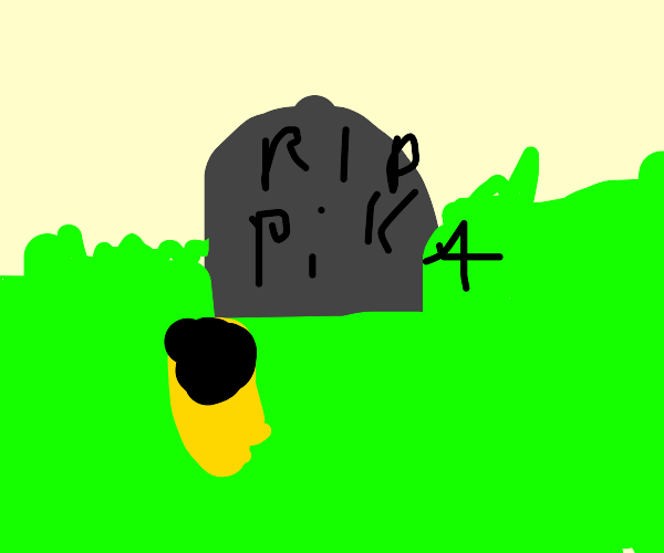 Pikachu's funeral, RIP