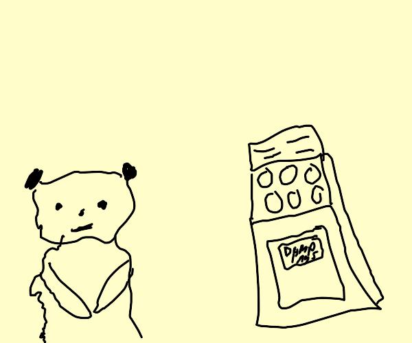 Meerkat baking a Dumpling