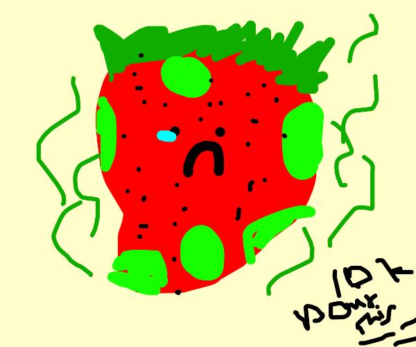Moldy Strawberry