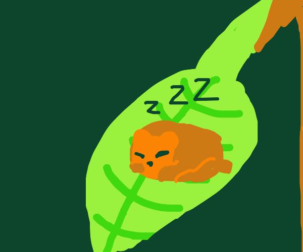 Tiny bear sleeping on a plant