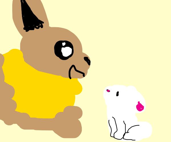 adorable eevee looking at bunny