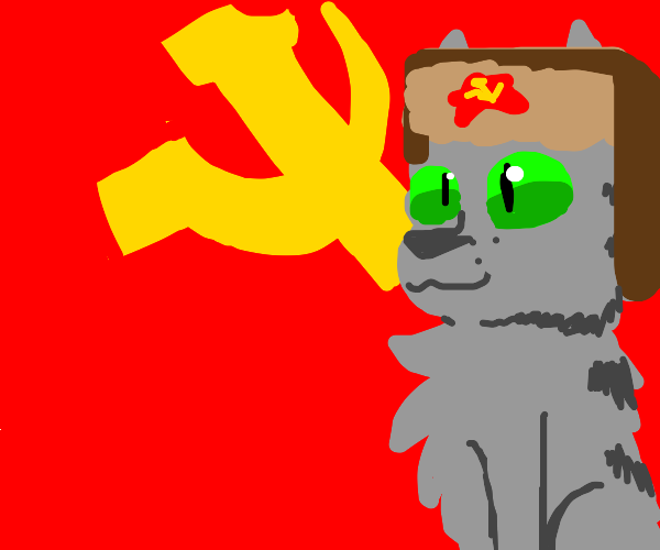 Communist cat with a hat