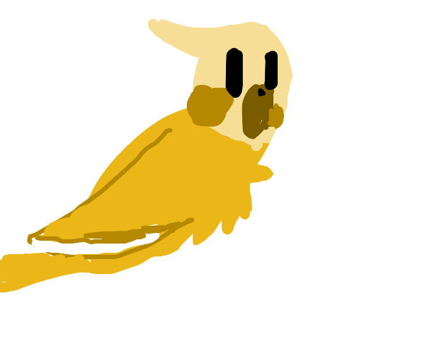 yellow birb