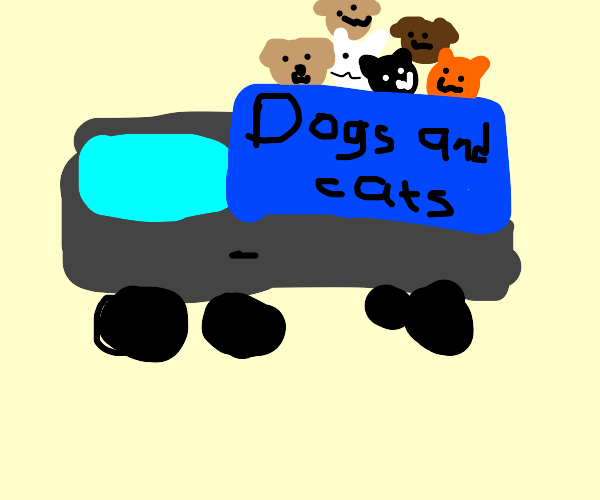 Dog and cat truck