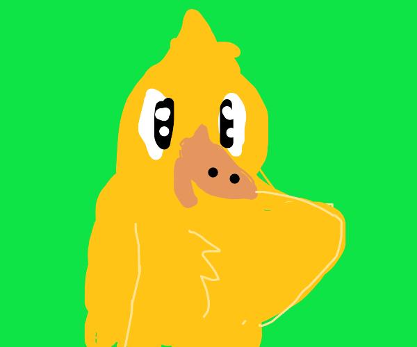 Yellow bird duck thing