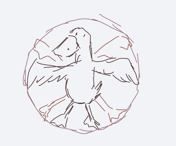 Leonardo Duck Vinci