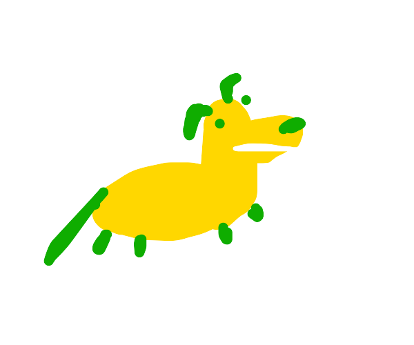 Green and yellow dog
