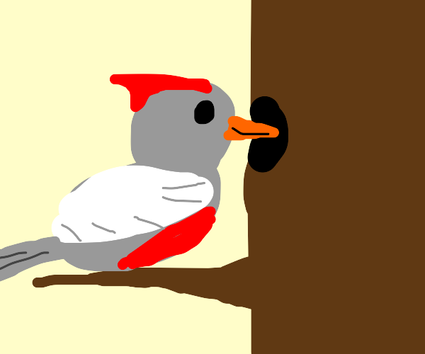 Joyous Woodpecker