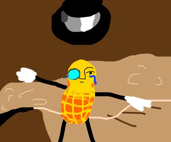 crying gentleman peanut