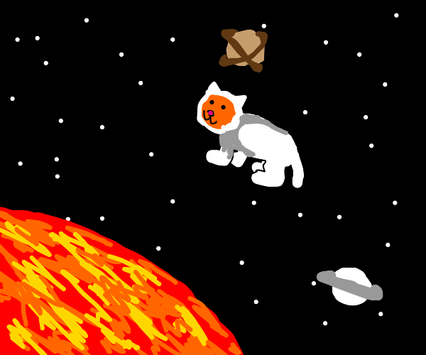 Cat in a space suit floating in space