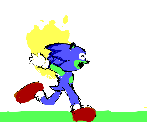 Sonic is on fire (Fandub reference maybe?)