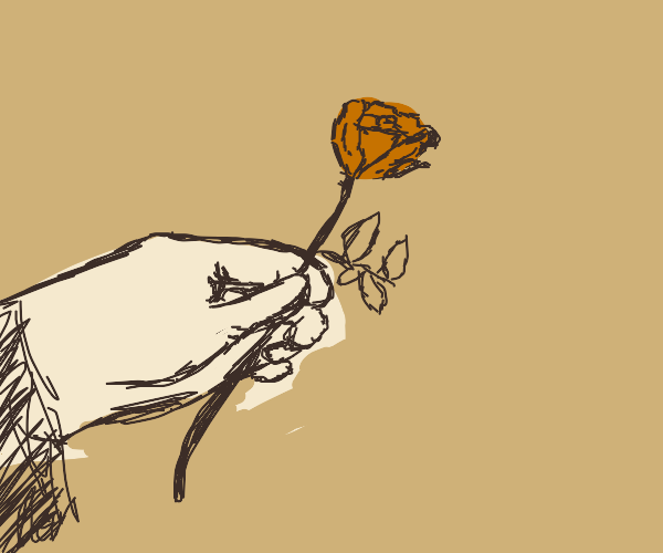 A hand holding a rose