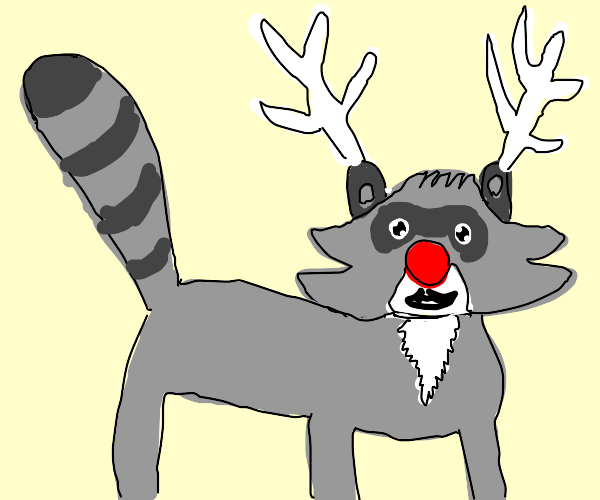Raccoon reindeer with a clown nose