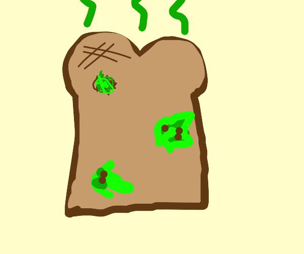 Old Toast