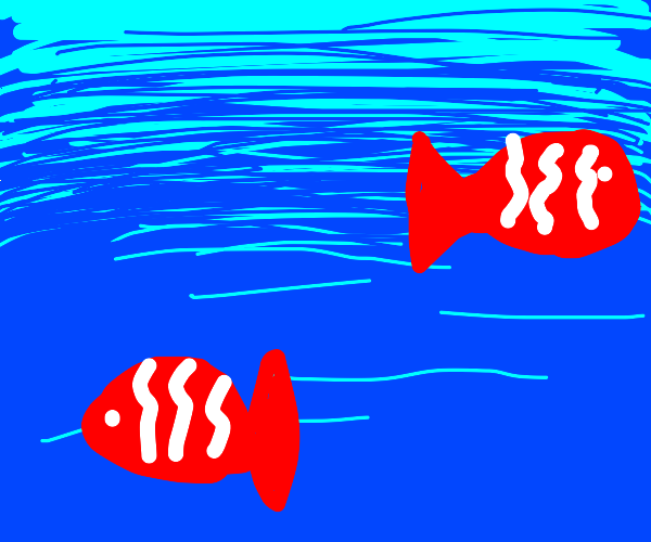 white and red fish