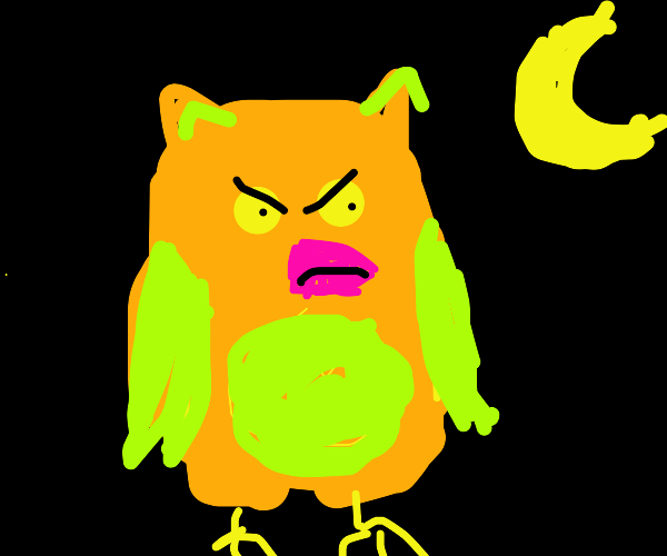 Owl? Angry at night