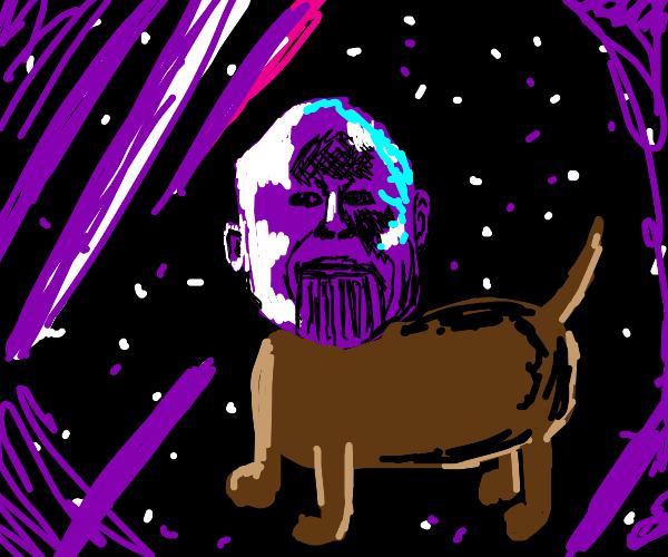 Thanos but a dog