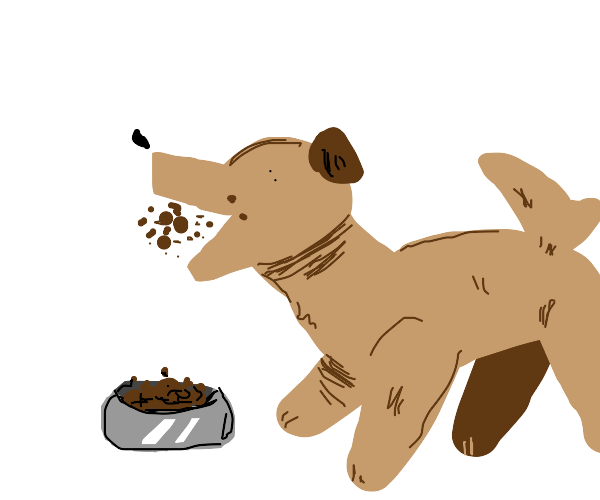 dog eating dog food