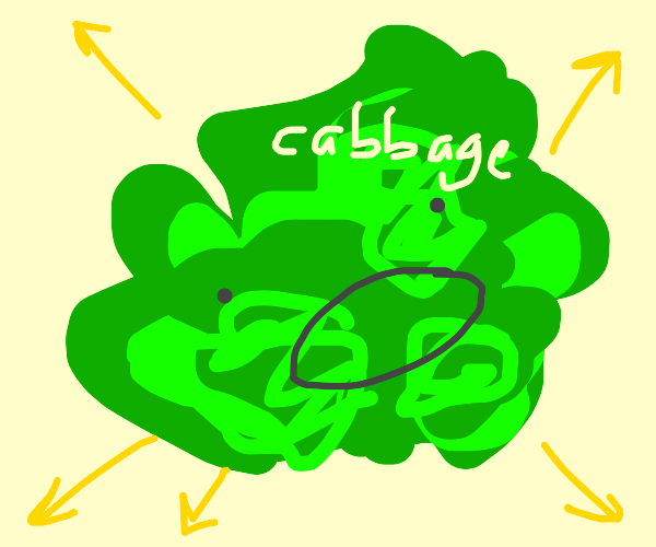 expanding cabbage