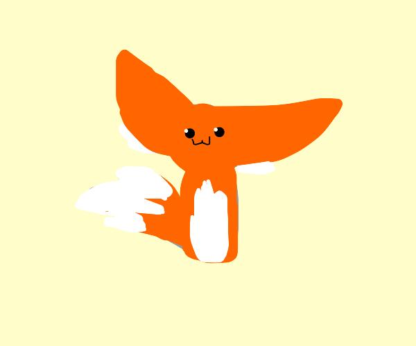 Orange fox with big ears
