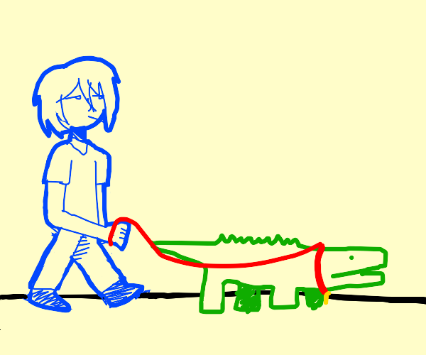 a kid walking in town with his pet crocodile