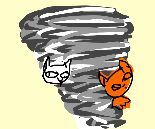cat storm