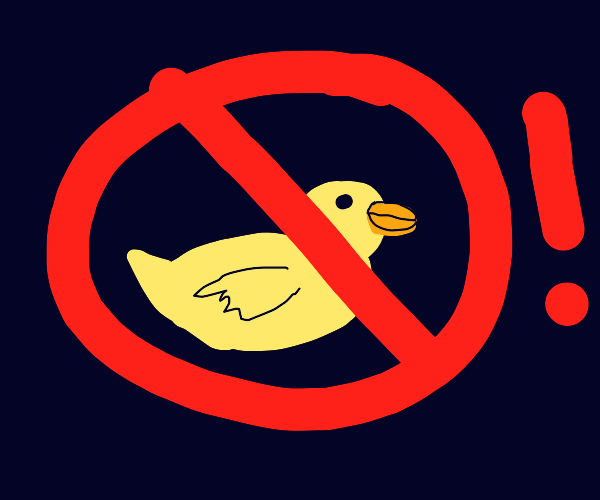 No ducks!