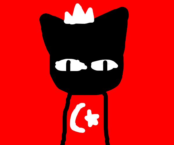 Introducing....The Cat King of the Turks!