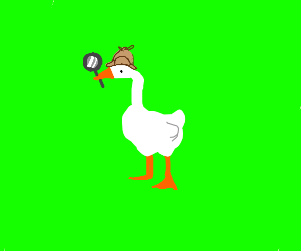 Witty Goose