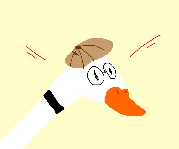 Detective goose