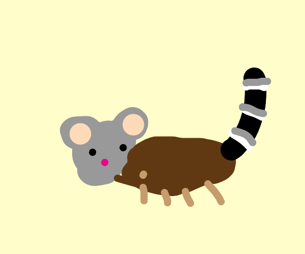 mouse face, squirrel body, raccoon tail