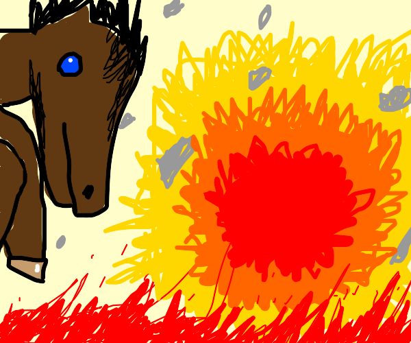 Horse destroys the universe